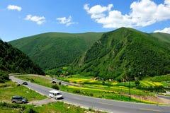 Horizontal coloré de montagne Photo stock