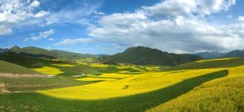 Horizontal coloré de montagne Image libre de droits