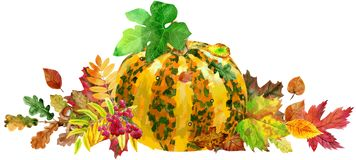 Horizontal composition of striped pumpkin and autumn leaves