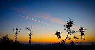 Horizontal crépusculaire Photos libres de droits