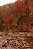 Horizontal d'érable d'automne Photos libres de droits