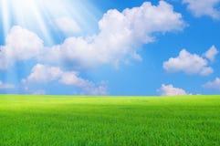Horizontal d'été Images libres de droits