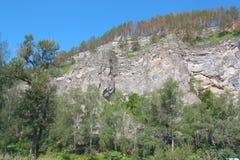 Horizontal d'été avec la montagne Photographie stock libre de droits