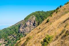 Horizontal d'été dans les montagnes Photos libres de droits