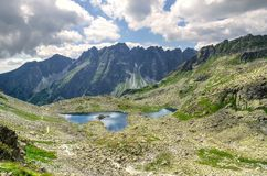 Horizontal d'été de montagne Photographie stock libre de droits