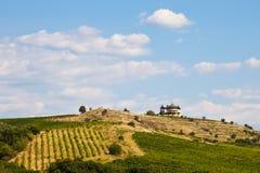 Horizontal d'établissement vinicole de montagne Images stock