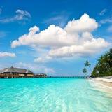 Horizontal d'île de paradis Photographie stock