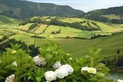 Horizontal d'île des Açores Photographie stock