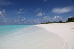 Horizontal d'île en Maldives Image libre de droits