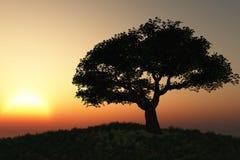 Horizontal d'arbre illustration stock