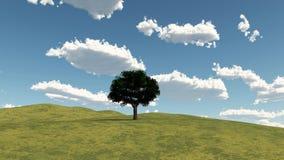 Horizontal d'arbre Images libres de droits