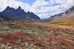 Horizontal d'Arctique d'automne Photographie stock libre de droits