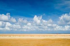 Horizontal d'Aruba Photos stock