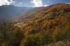 Horizontal d'automne Photo libre de droits