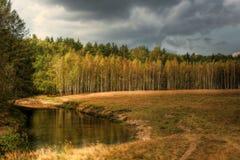 Horizontal d'automne. Photo libre de droits