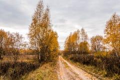 Horizontal d'automne avec la route Photos stock