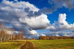 Horizontal d'automne avec le bouleau Images libres de droits