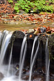 Horizontal d'automne avec le fleuve Image libre de droits