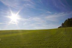 Horizontal d'automne avec le soleil Image stock