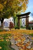 Horizontal d'automne avec les lames jaunes Image libre de droits