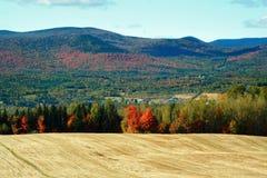 Horizontal d'automne de pays photo stock