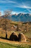 Horizontal d'automne en Roumanie Photo libre de droits
