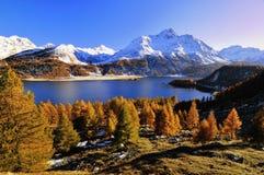 Horizontal d'automne en Suisse photographie stock