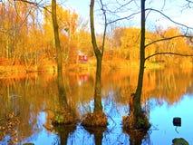 Horizontal d'automne sur un lac image libre de droits