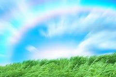 Horizontal d'an solaire Photographie stock libre de droits