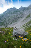 Horizontal dans les alpes Photo stock