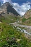 Horizontal dans les montagnes Photo libre de droits