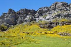 Horizontal dans Pyrénées, Espagne Photo libre de droits