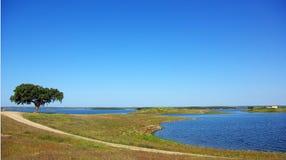 Horizontal de barrage d'Alqueva. Photos libres de droits