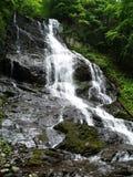 Horizontal de cascade à écriture ligne par ligne en montagnes Photographie stock