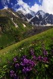 Horizontal de Caucase Photographie stock