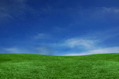 Horizontal de ciel bleu et d'herbe verte Image libre de droits