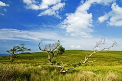Horizontal de Conamara Photos libres de droits