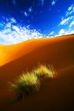 horizontal de désert Photo libre de droits