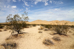 Horizontal de désert (désert de Mojave) images libres de droits
