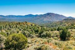 Horizontal de désert de l'Arizona Photos libres de droits
