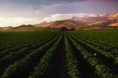 Horizontal de ferme Photo libre de droits