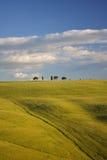 Horizontal de ferme de la Toscane photographie stock libre de droits