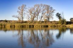 Horizontal de fleuve Photographie stock libre de droits
