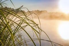 Horizontal de fleuve avec le lever de soleil Photos stock