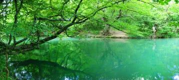Horizontal de fleuve d'été Photographie stock