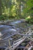 Horizontal de fleuve de montagne photographie stock libre de droits