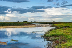 Horizontal de fleuve de Shannon Photographie stock