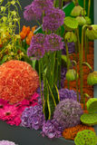 Horizontal de jardin Images libres de droits
