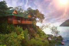 Horizontal de jungle Photos libres de droits