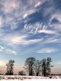 Horizontal de l'hiver. Photographie stock libre de droits